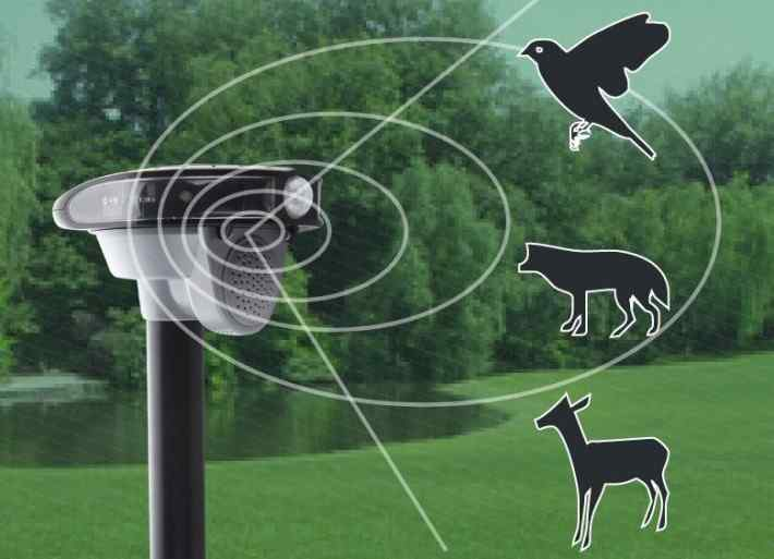 Ultrasonic animal and pest repellent