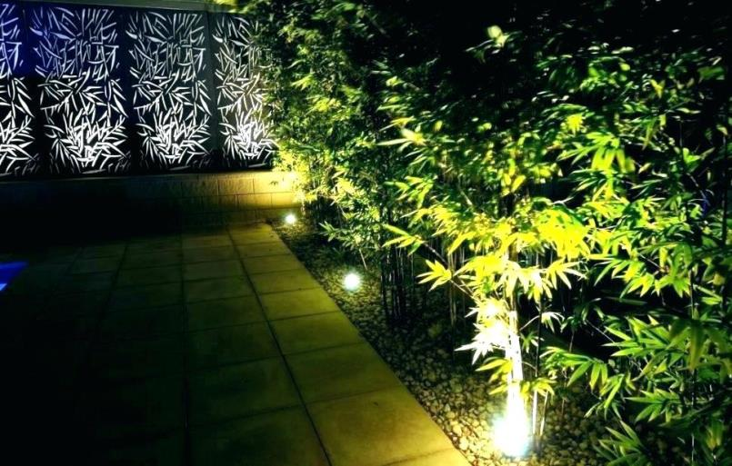 Solar Landscape Spotlights for garden transformation